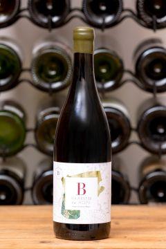 B Vintners Haarlem To Hope White Chenin Blanc, Western Cape from LEKKER WINES